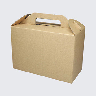 Corrugated Carrier Boxes
